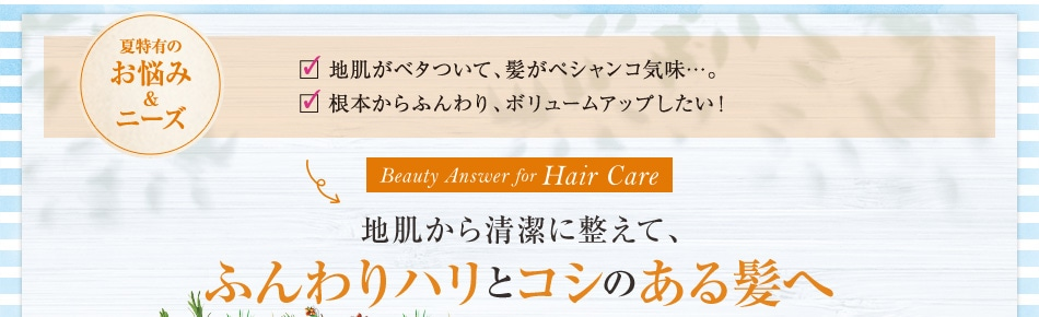 地肌から清潔に整えて、ふんわりハリとコシのある髪へ