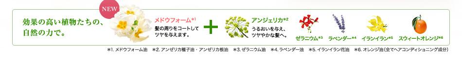 効果の高い植物たちの、自然の力で。