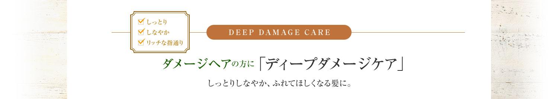 DEEP DAMAGE CAREダメージヘアの方に「ディープダメージケア」ダメージヘアの方に「ディープダメージケア」しっとりしなやか、ふれてほしくなる髪に。