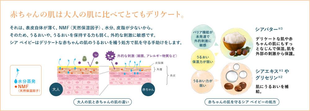 赤ちゃんの肌は大人の肌に比べてとてもデリケート。それは、表皮自体が薄く、NMF(天然保湿因子)、水分、皮脂が少ないから。そのため、うるおいや、うるおいを保持する力も弱く、外的な刺激に敏感です。シア ベイビーはデリケートな赤ちゃんの肌のうるおいを補う処方で肌を守る手助けをします。