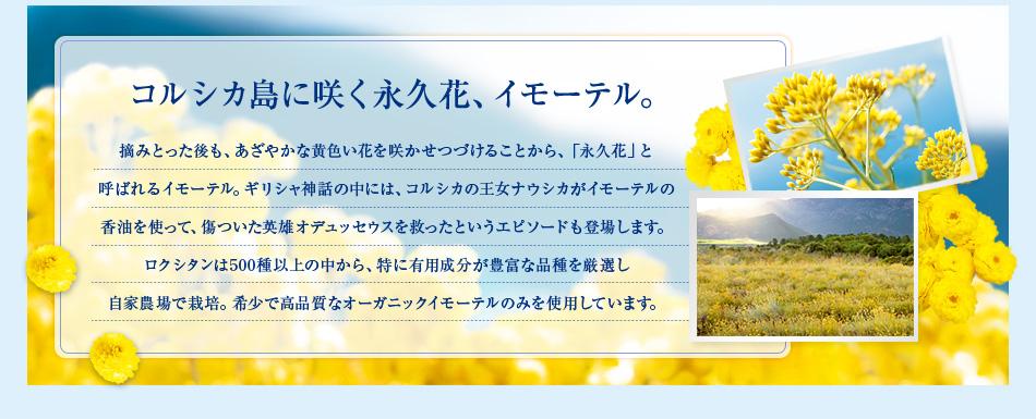 コルシカ島に咲く永久花、イモーテル。 摘みとった後も、あざやかな黄色い花を咲かせつづけることから、「永久花」と呼ばれるイモーテル。ギリシャ神話の中には、コルシカの王女ナウシカがイモーテルの香油を使って、傷ついた英雄オデュッセウスを救ったというエピソードも登場します。ロクシタンは500種以上の中から、特に有用成分が豊富な品種を厳選し自家農場で栽培。希少で高品質なオーガニックイモーテルのみを使用しています。